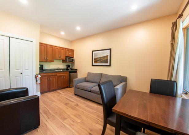 Picture of large studio suite interior