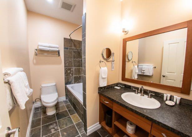 Picture of large studio suite bathroom